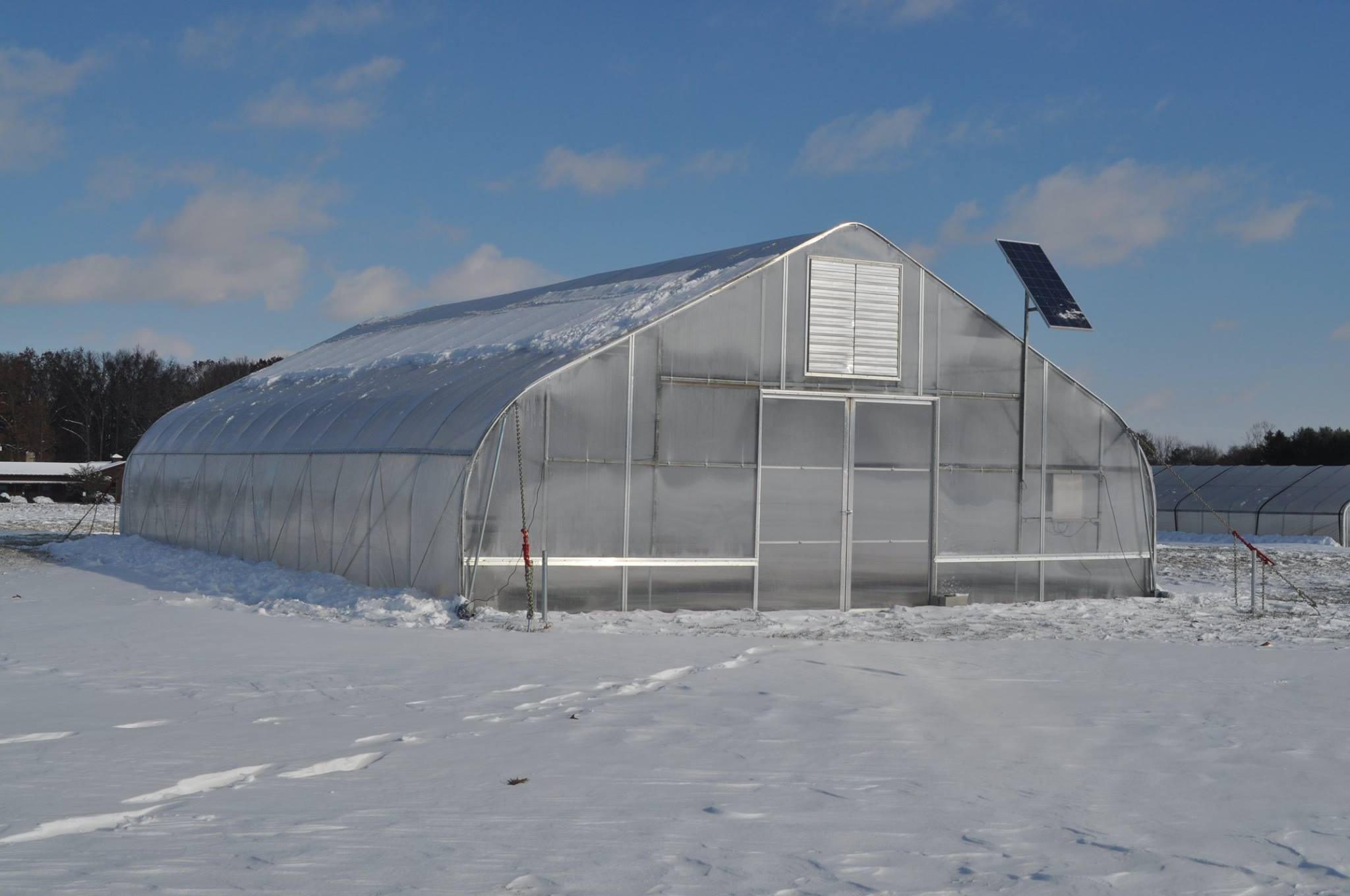 Surprising 5 Steps To Grow Through The Cold In A Winter Greenhouse Home Interior And Landscaping Mentranervesignezvosmurscom