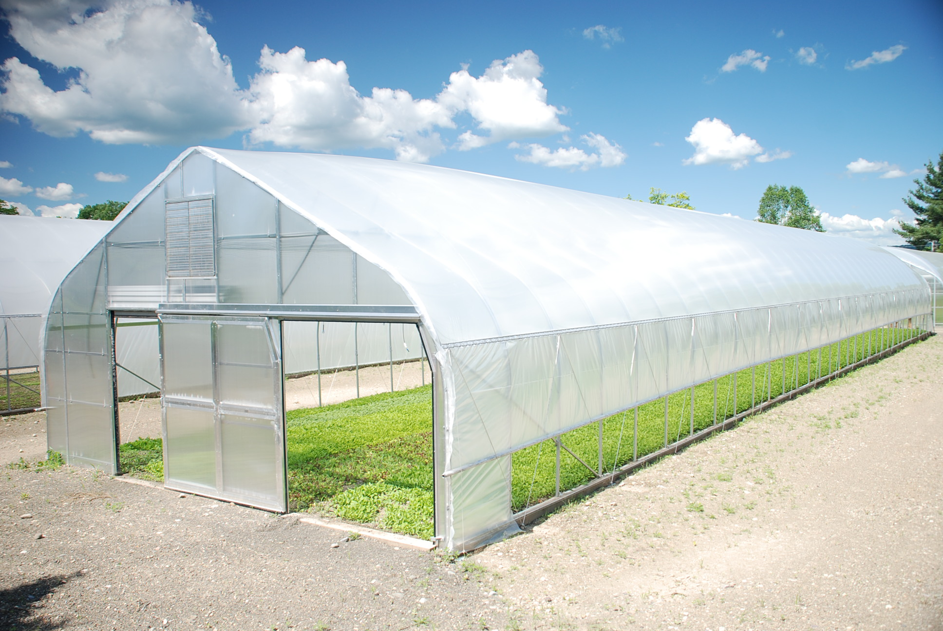 Nrcs announces 2016 deadline for high tunnel funding - Increase greenhouse production cost free trick ...