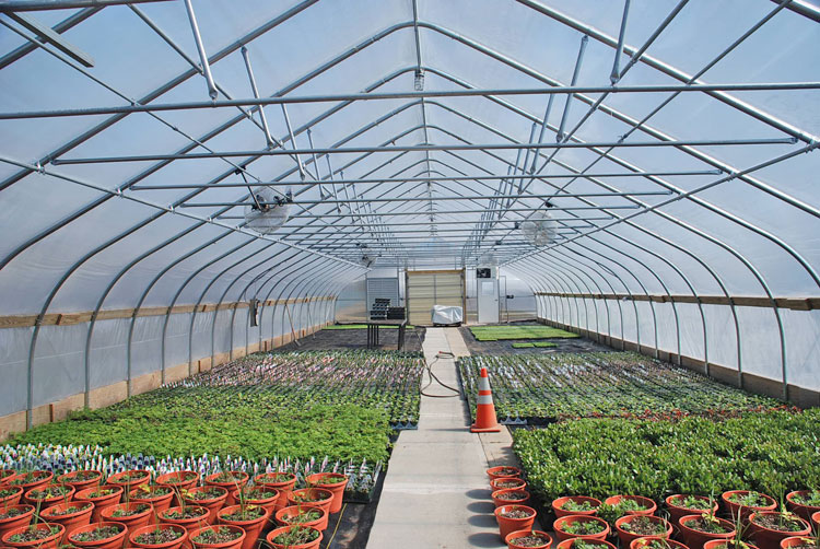 want to boost energy efficiency reduce costs for your greenhouse energy curtains to the rescue - Rimol Greenhouse Of Photos