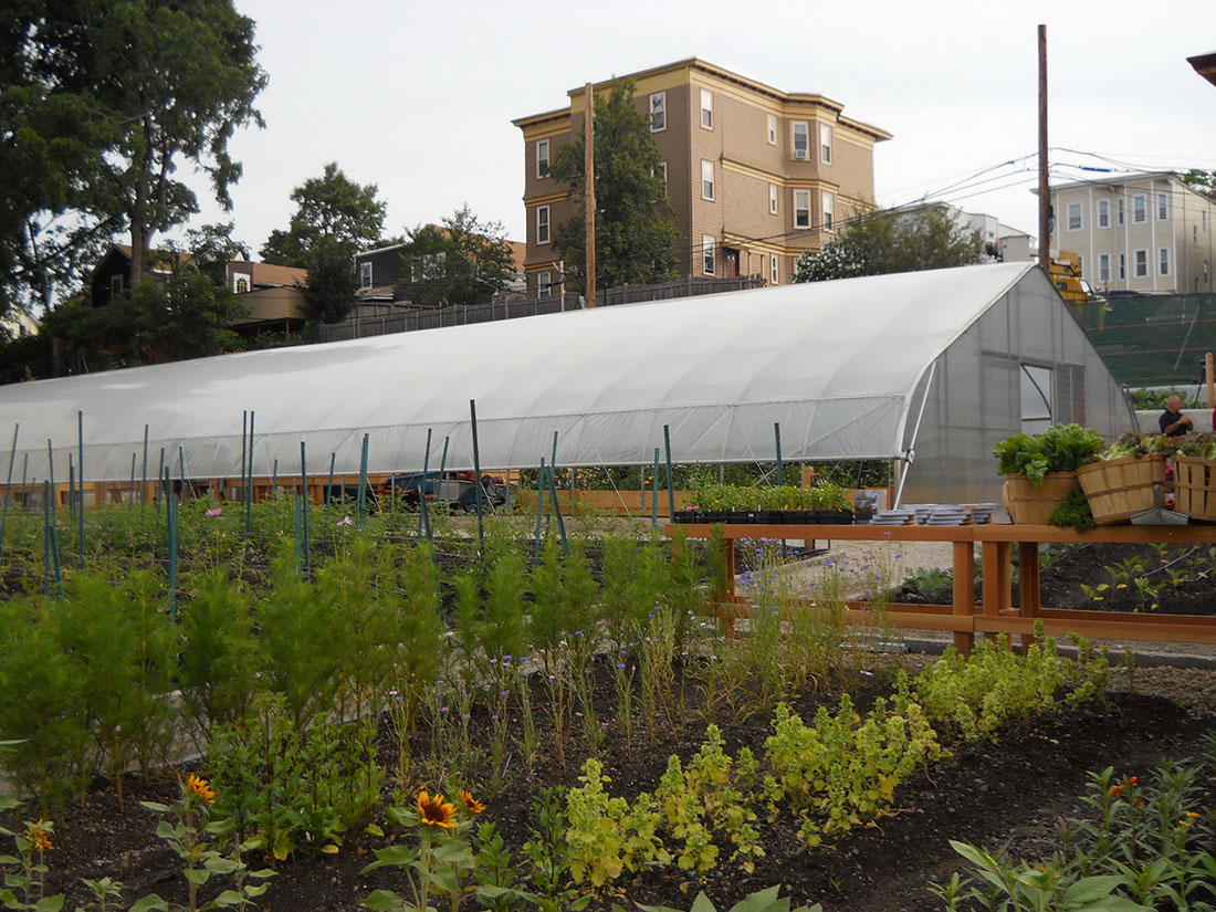 Rimol Greenhouse Systems in an urban setting at the ReVision Urban Farms in Boston.