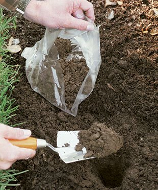 Everything you need to know about soil sampling rimol for Everything about soil