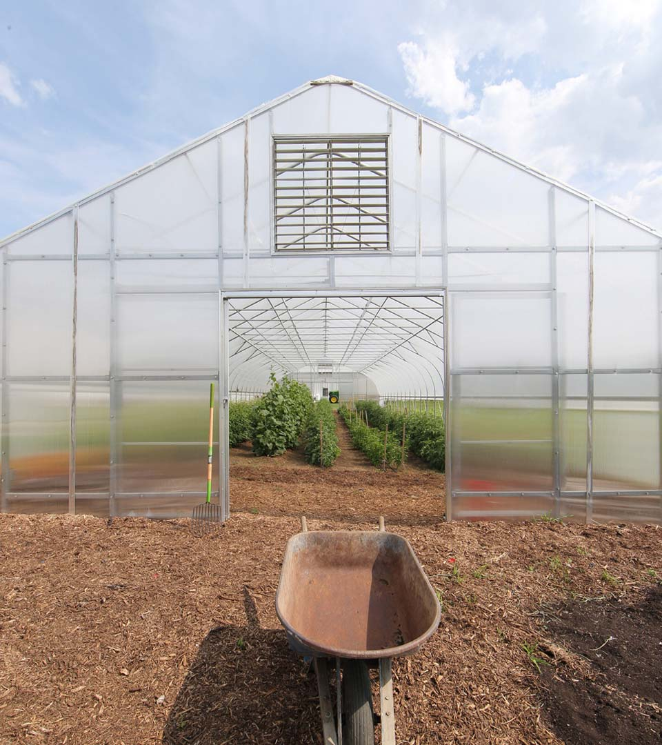 Greenhouse and wheelbarrow