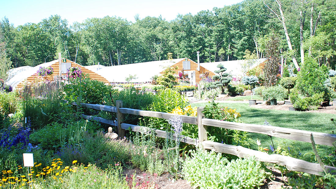 Shady Hill Greenhouse
