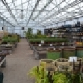 Keeping customers moving comfortably is key to garden center layout.